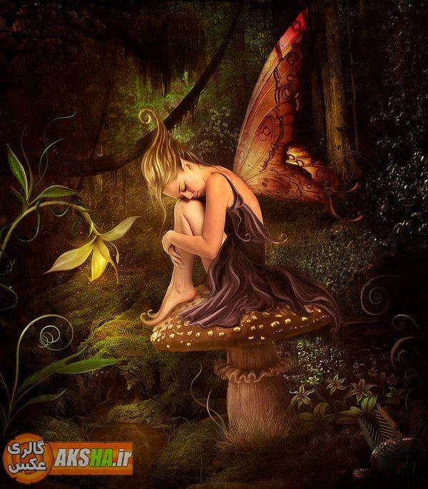 http://aksha8.persiangig.com/image/fantasy-aksha.ir/aksha.ir%20(1).jpg